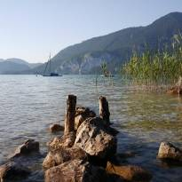 Sommer am Wolfgangsee_21